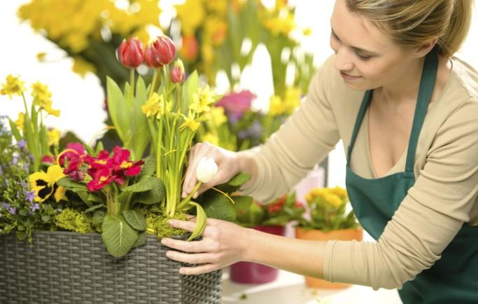 Đồ hoa vải vùng nào đẹp nhất hiện nay