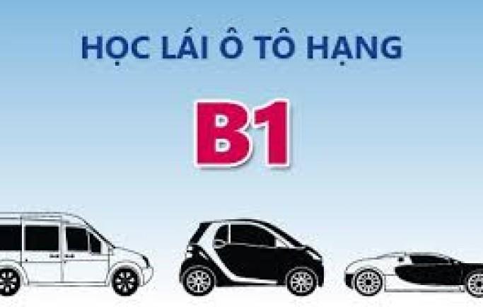 Trường dạy học bằng lái xe oto b1 giá rẻ nhất tpHCM