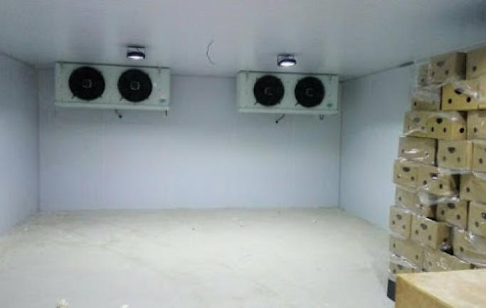 Xây dựng Hệ thống điện điện lạnh dành cho nhà máy chế biến sữa chua
